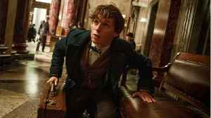 New Pic From Fantastic Beasts: The Crimes Of Grindelwald [Video]