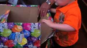 A Tot Boy Doesn't Want A New Baby Sister As His Birthday Present [Video]