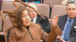 Woman Dresses Like Giant Cockroach in Bizarre Texas City Council Meeting [Video]