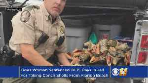 Dallas Woman Gets 6 Months For Collecting Shells [Video]