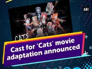 Cast for 'Cats' movie adaptation announced [Video]