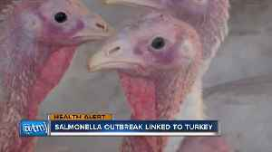 Salmonella outbreak linked to turkey [Video]