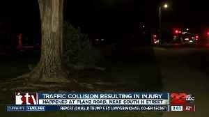 Man crashes into tree at Planz Park [Video]