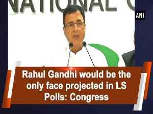Rahul Gandhi would be the only face projected in LS Polls: Congress [Video]