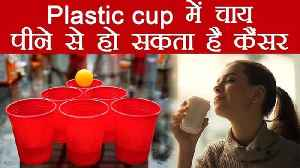 Plastic Cup Harmful: Disposable और Thermocol के cup में चाय प& [Video]
