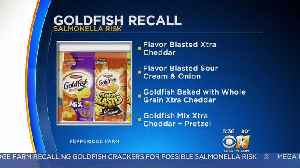 4 Types Of Goldfish Crackers Recalled, Salmonella Fears [Video]