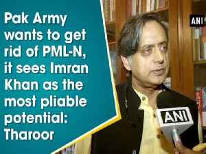 News video: Pak Army wants to get rid of PML-N, it sees Imran Khan as the most pliable potential: Tharoor