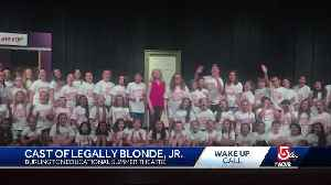 Wake Up Call from cast of Legally Blonde Jr. [Video]