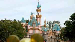 Disneyland Resort Proposes To Raise Minimum Wage For California Park Workers [Video]