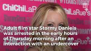 Breaking: Stormy Daniels Arrested For Sex Crime With Undercover Officer [Video]
