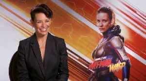 'Ant-Man And The Wasp': Exclusive Interview With Evangeline Lilly & Peyton Reed [Video]
