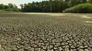 Heatwave deaths to soar dramatically, global study finds [Video]