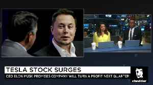 Tesla Stock Surges After Q2 Earnings Report [Video]