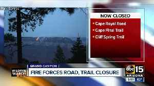 Fire forces Grand Canyon trails to close [Video]