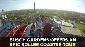 Busch Gardens offers behind-the-scenes roller coaster tours for thrill seekers | Taste and See Tampa Bay [Video]