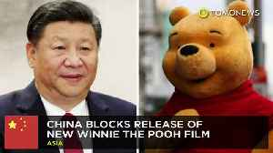 China blocks release of new Winnie the Pooh film [Video]