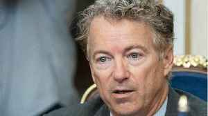 Rand Paul Emerges As One Of Trump's Biggest Allies On Russia [Video]