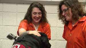 Indiana Jail Believes Therapy Dog Program is Leading to Fewer Fights [Video]