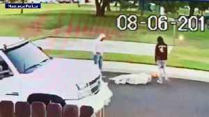 Police Chief's Son Arrested in Attack on Elderly Sikh Man [Video]