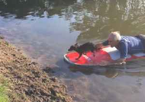 Myrtle Beach Police Rescue Dog Stranded in Pooch Park Pond [Video]