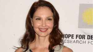 Ashley Judd Speaks Out Against Harvey Weinstein's Attempt to Dismiss Lawsuit [Video]