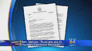 Sen. Bill Nelson: Russians 'Penetrated' Florida Voter Registration Systems [Video]