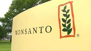 Monsanto ordered to pay $289m in cancer trial [Video]