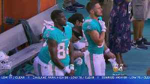 Local Police Association Calls On Local Law Enforcement To Boycott Dolphins Over Anthem Protests [Video]