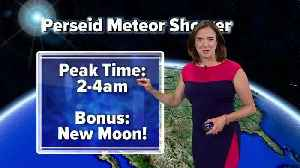 Perseid meteor shower: When and how to watch [Video]