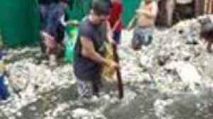 Torrential Rain Brings Flooding – and Garbage – to Philippine City of Navotas [Video]