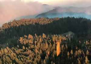 Ranch Fire Becomes Largest Wildfire in California History [Video]