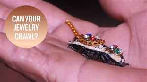 Is it animal abuse? Mexico's controversial roach brooch [Video]