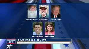 Nicholson, Vukmir, make final pitch to GOP primary voters in U.S. Senate race [Video]