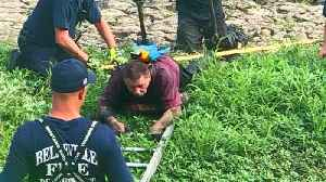 Firefighters Rescue Man and His Pet Parrot From Illinois Mud Pit [Video]