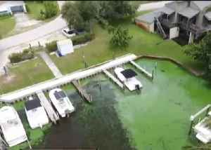 Martin County officials hoping to start cleaning algae by the end of week [Video]