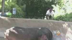 Man Caught On Camera Celebrating After Smacking Hippo At Los Angeles Zoo [Video]