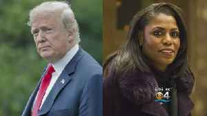 News video: Trump Campaign Takes Legal Action Against Former Aide Omarosa
