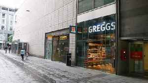 Winged robbery: Shady seagulls steals packet of crisps from Greggs in from of shocked customers [Video]