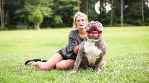 Mississippi Mom Is The $15,000 Pit Bull Queen [Video]