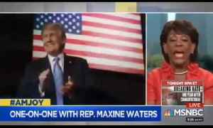 Maxine Waters wants Trump impeachment for her 80th birthday [Video]