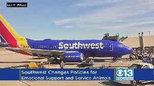Southwest Changes Emotional Support And Service Animal Policies [Video]
