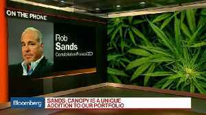 Cannabis Industry Poised for Tremendous Growth, Constellation Brands CEO Says [Video]