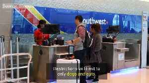 Southwest Airlines Restrict Service Animals [Video]