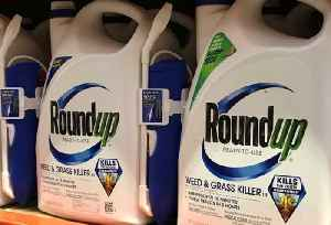 Roundup Cancer Verdict Paves Way for Other Lawsuits [Video]