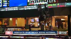 Westgate sportsbook going national [Video]