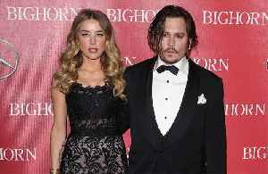 Johnny Depp and Amber Heard 'split over dog poo row' [Video]