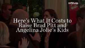 Here's What It Costs to Raise Brad Pitt and Angelina Jolie's Kids [Video]