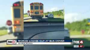 Woman chases down school bus, yells at driver [Video]