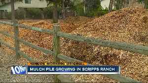 Mulch pile continues to grow in Scripps Ranch [Video]