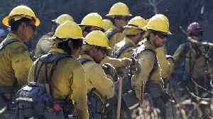 New Forest Service Plan Aims To Alleviate Wildfire Problem [Video]